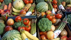 Worthing Direct Leaflet Distribution Services - Fruit & Veg Shoreham